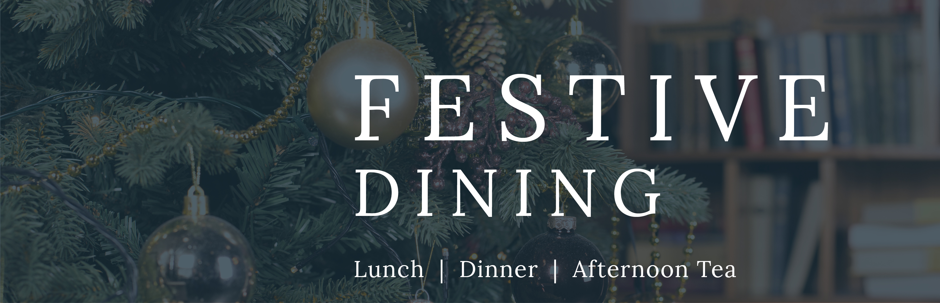 Take a look at our festive menus